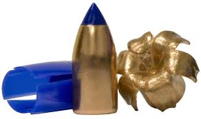 Black Powder Bullets